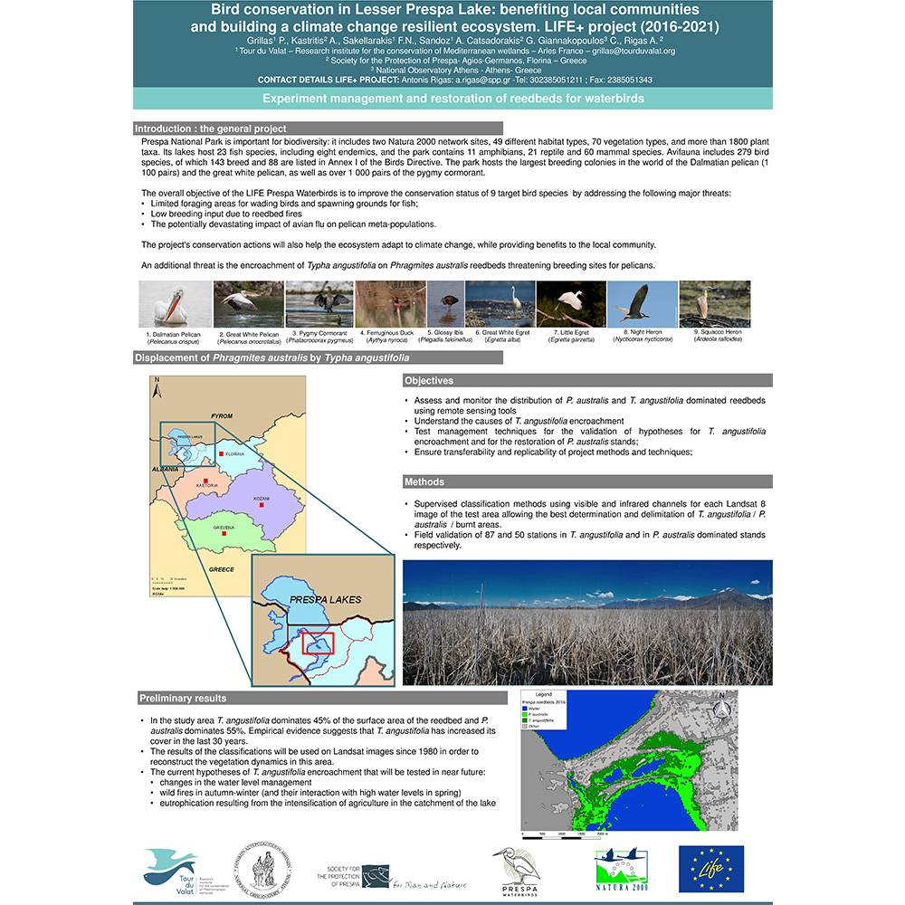 Poster at the 12th European Chapter meeting of the Society of Wetland Scientists